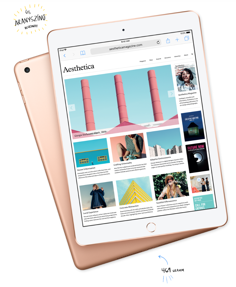 Apple iPad 6 9.7 (2017)
