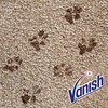 Vanish Pet Expter sada