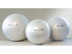 Професионална топка за фитнес Aktiv Pro Maxafe 65cm Fitball (TL-2FPRO65SSI)