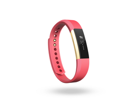 Fitbit Alta Gold Edition [FB406GPKS-E]