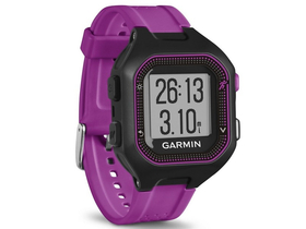 "Garmin Forerunner 25 ""Big"""