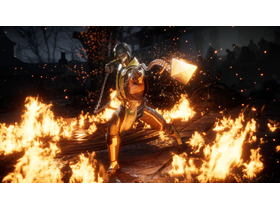 Warner Bros Interact Mortal Kombat 11 Nintendo Switch játékszoftver